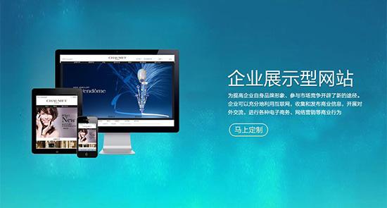 企业品牌展示型网站